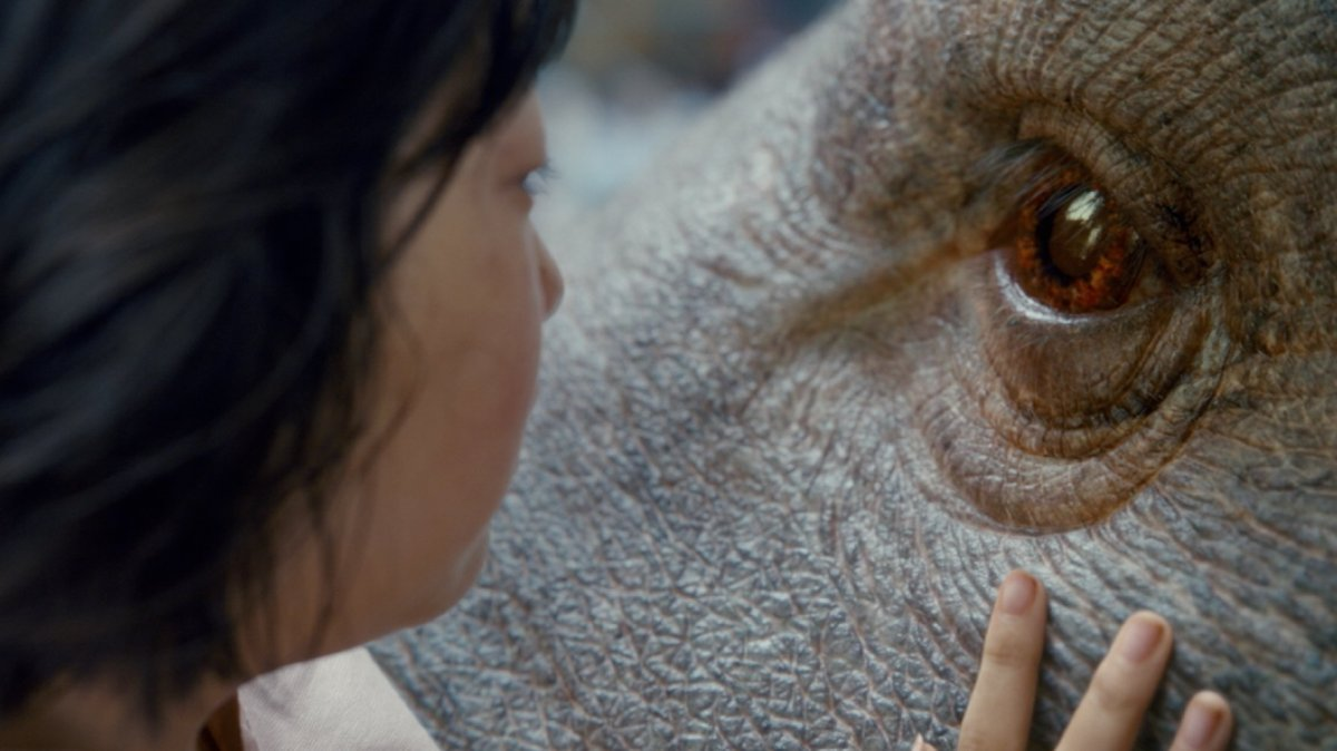 Okja (After the Campaign MovieReview)