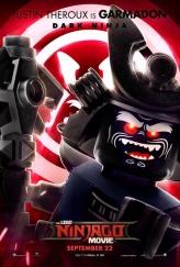 lego ninjago poster 24