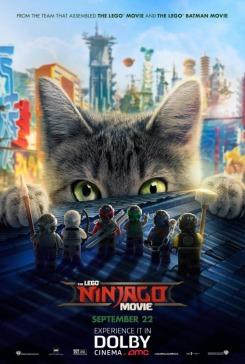 lego ninjago poster 33