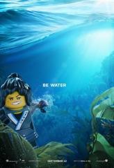 lego ninjago poster 6