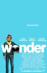 wonder poster 13