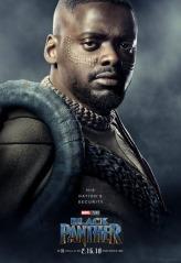 black panther poster 14