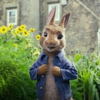 Peter Rabbit - Marketing Recap