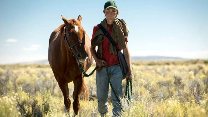 lean on pete pic
