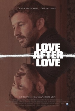 love after love poster 2